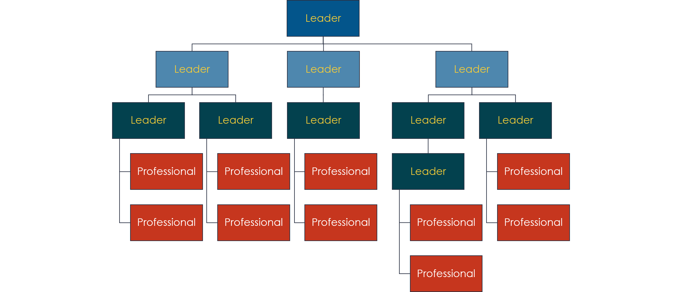 vertical org chart showing leaders above professionals
