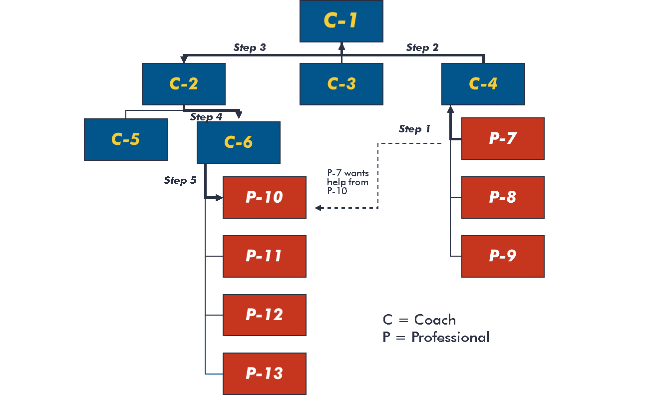 chart showing non-authority relationships between coaches and professionals